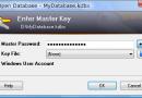02 - Master Passwort